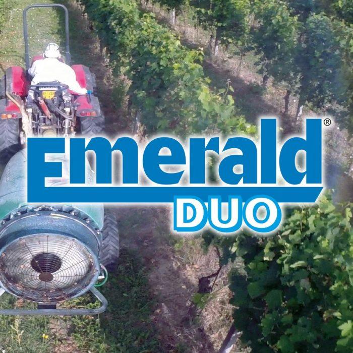 Emerald Duo