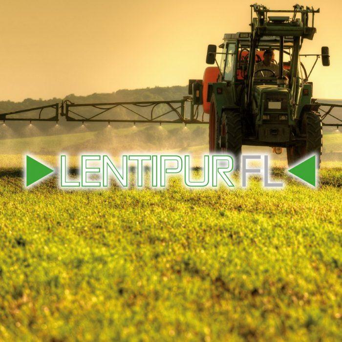 LentipurFL