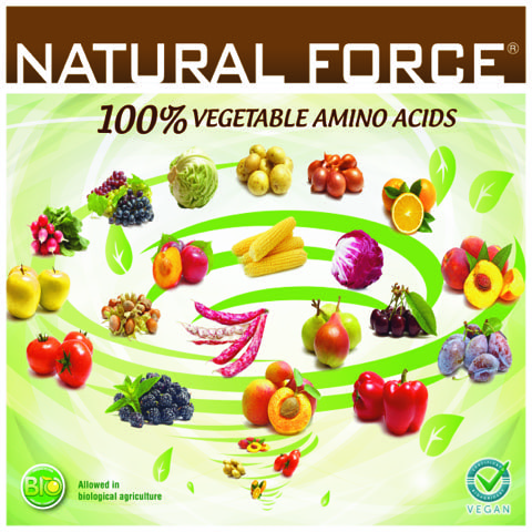 natural_force_001