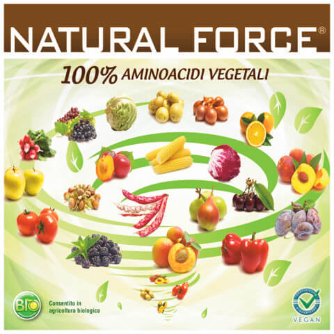 natural_force_004