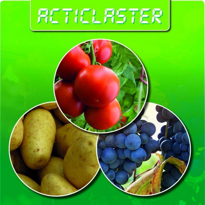 s_Acticlaster_Prodotto