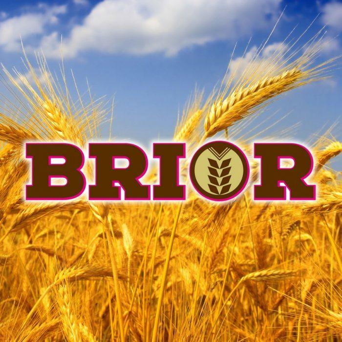 s_Brior