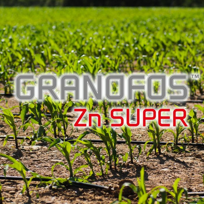 s_Granofos Zn Super