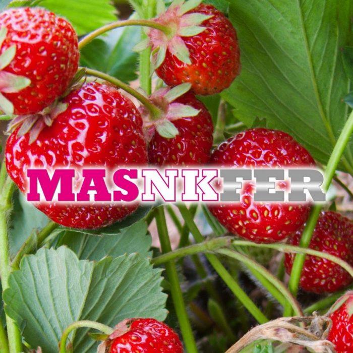 s_MasNKFer_4