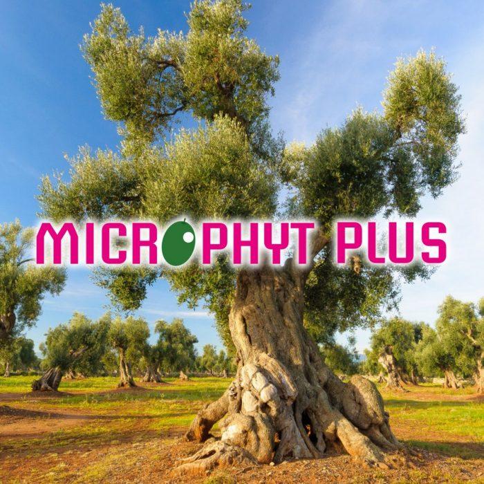 s_Microphyt Plus