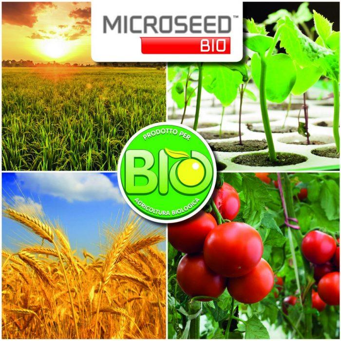 s_MicroseedBio_Prodotto