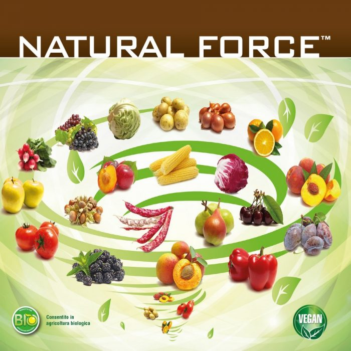 s_NaturalForce