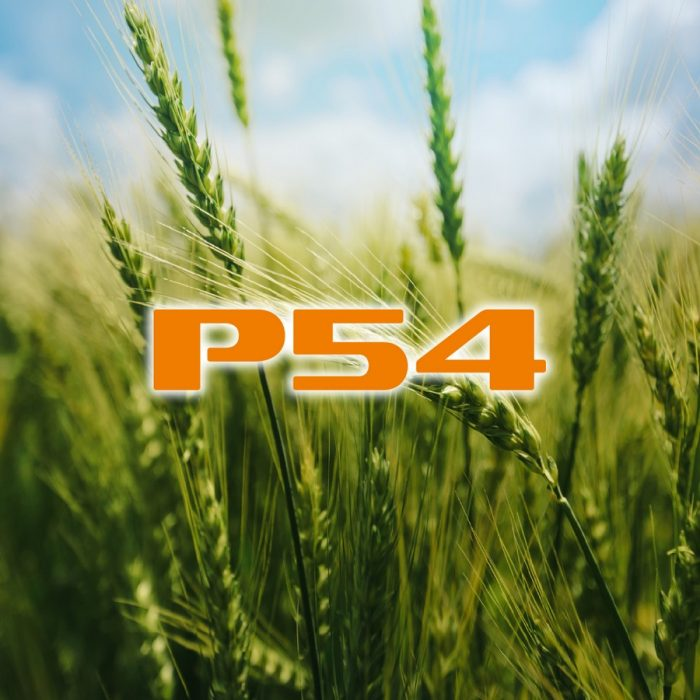 s_P54