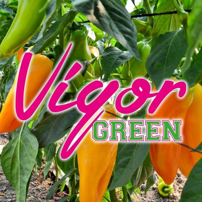 s_VigorGreen